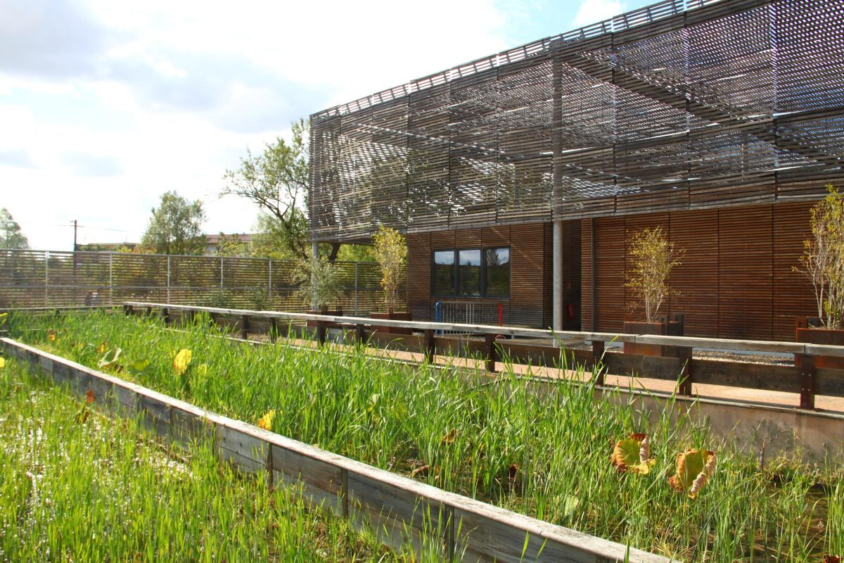 Investissement locatif Toulouse loi Pinel - Les jardins de la Maourine à Borderouge