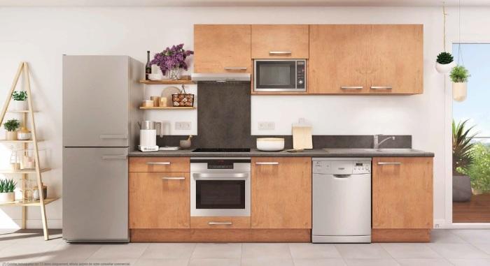 Maisons neuves et appartements neufs Montaudran référence 4708 : aperçu n°2