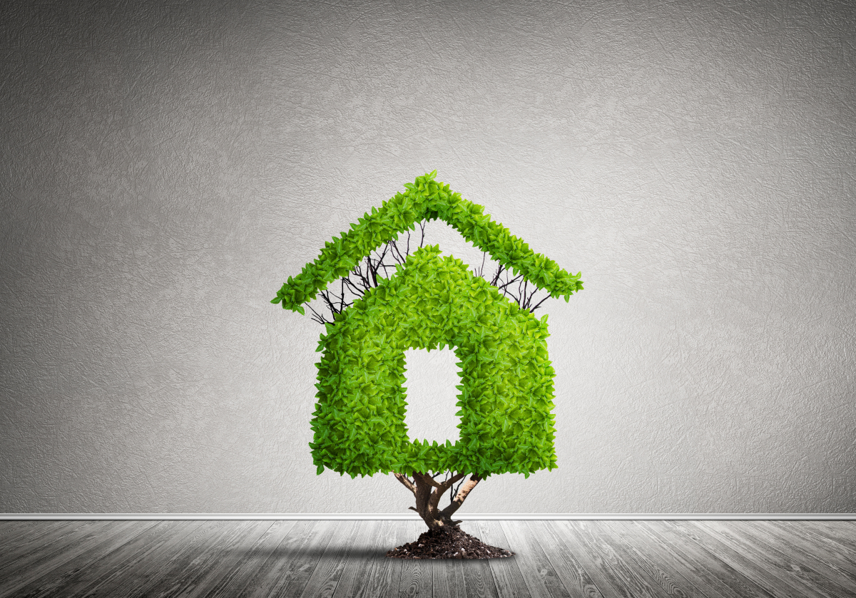 loi Climat et Résilience- Illustration d'une maison écologique