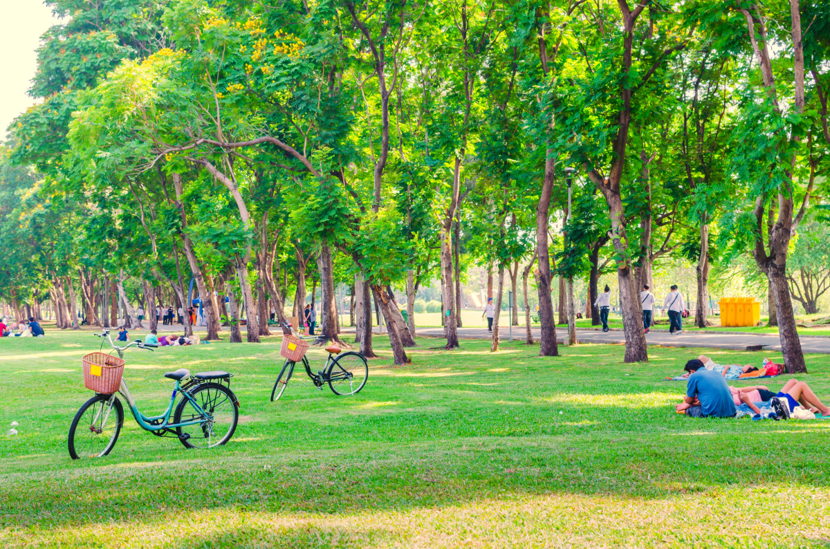 LGV Bordeaux-Toulouse  –  parc verduré à Toulouse