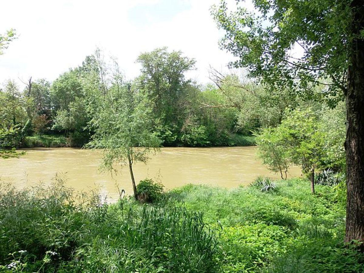 immobilier neuf à Goyrans  –  réserve naturelle Confluence Garonne Ariège