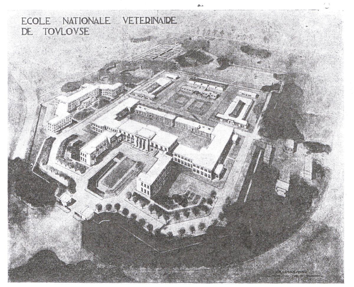 Dessin du bâtiment Lemaresquier à Toulouse vue de haut