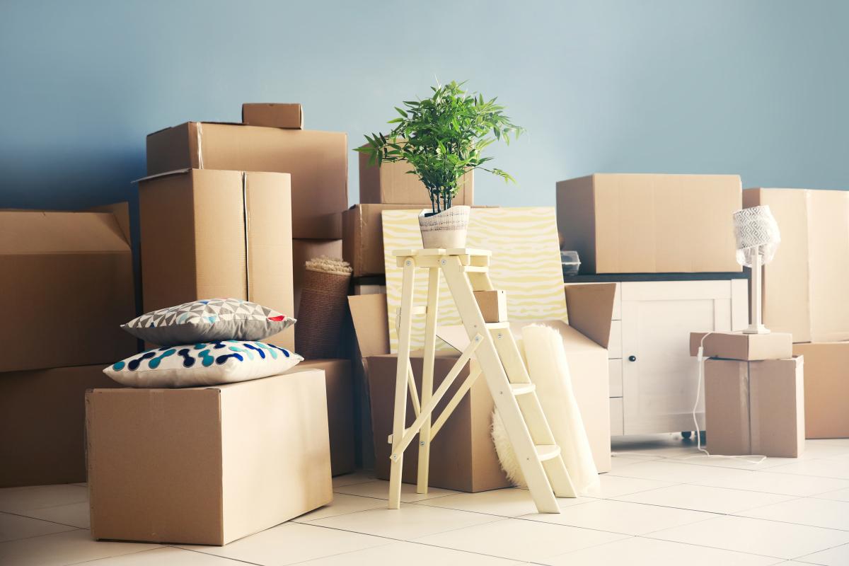 Assurer son logement étudiant - Cartons de déménagements et éléments de décoration dans le séjour