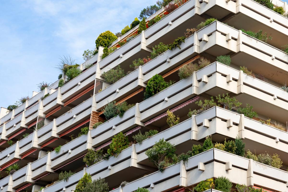 nouveau Pinel – des appartements avec terrasse à Toulouse